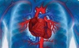 Prevenção e tratamento de pessoas contaminadas são as estratégias de redução do número de casos da doença, que atinge principalmente o coração