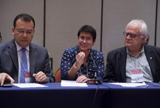 Carina Vance, diretora do Isags, descreveu as atividades de seu instituto para a implementação da Agenda 2030 (foto: Pedro Linger)
